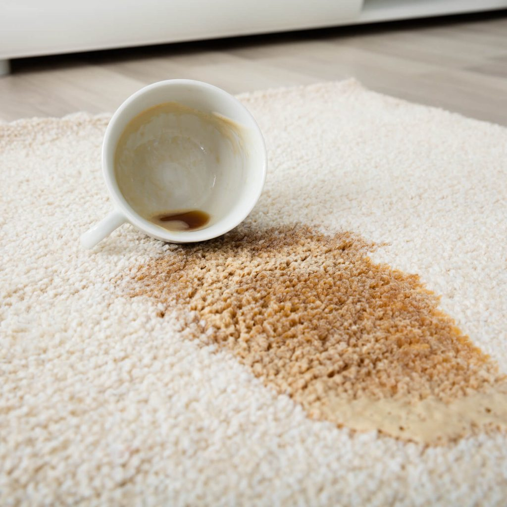 Professional Rug Cleaning | Hamernick's Interior Solutions